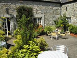 Cafetería Starguts Thecourtyard